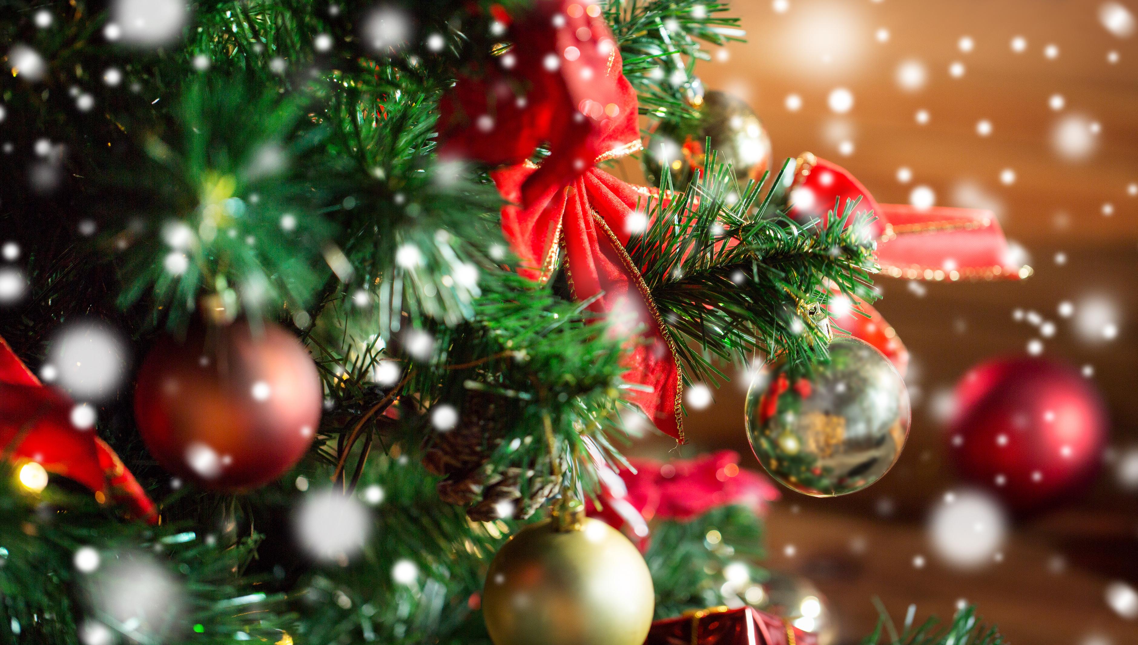 圣诞将至,蓝猫建议可以这样装扮房间!超有圣诞气氛!!