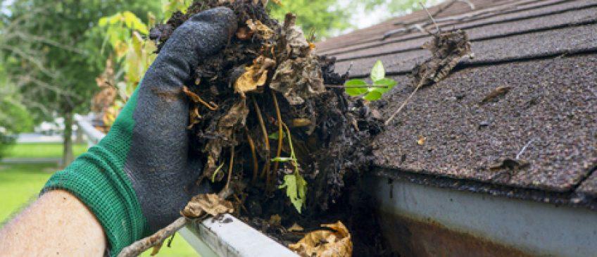 加拿大房屋屋顶的清理注意事项!尤其是屋顶的防渗漏!