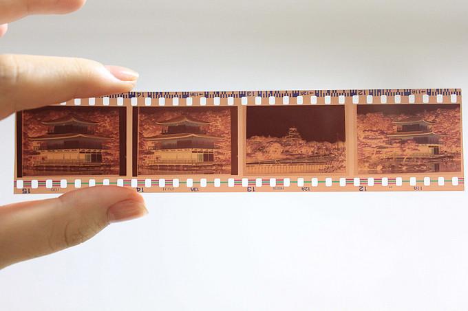 如何正确的保存胶卷?