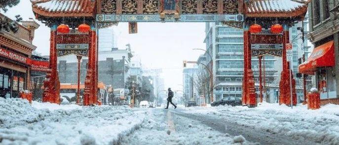 还来?加拿大环境部今早再发降雪警报!哭!加拿大邮政暂停岛上部分地区服务…