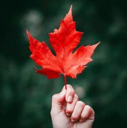 加拿大凭什么成为最受欢迎的移民国家?看完这12项社会福利就懂了