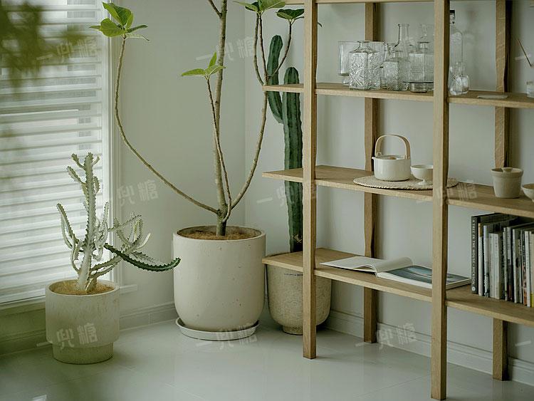 有了这些植物,家里成了小镰仓