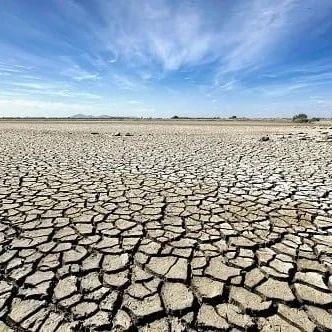 旱的旱死,涝的涝死!温哥华岛部分地区进入四级干旱状态,大家准备好了吗?!