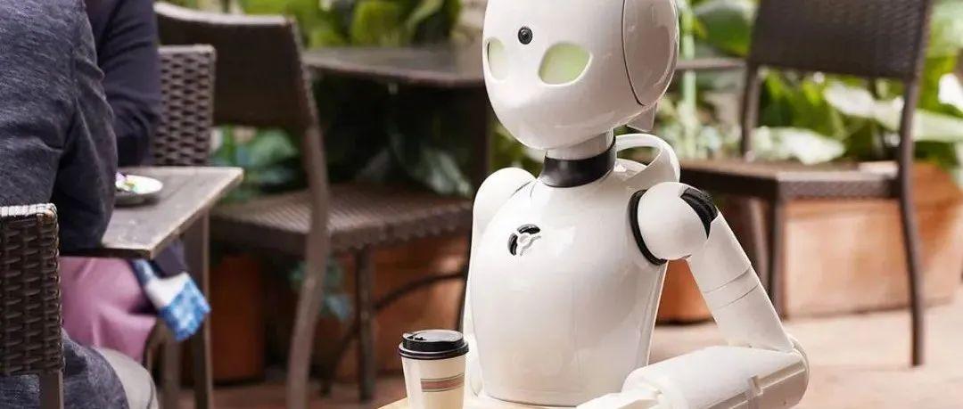 真高级!维多利亚DT饭店竟有机器人做服务员?!快来Pick宠物啦,领养费现5折哦!!
